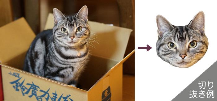 猫用首輪チャーム