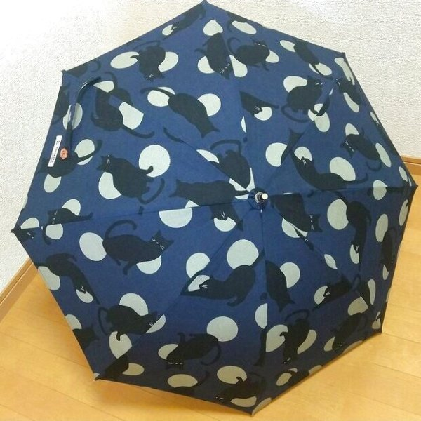 画像1: 日傘<2/青>宅配送料込み (1)