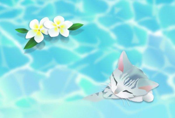 画像1: ポストカード<水辺2〜トラ猫〜> (1)