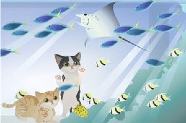 画像1: ポストカード<水族館> (1)