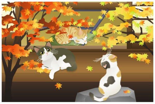 画像1: ポストカード <紅葉の縁側〜庭〜> (1)