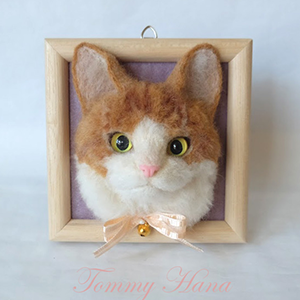 Tommy Hana