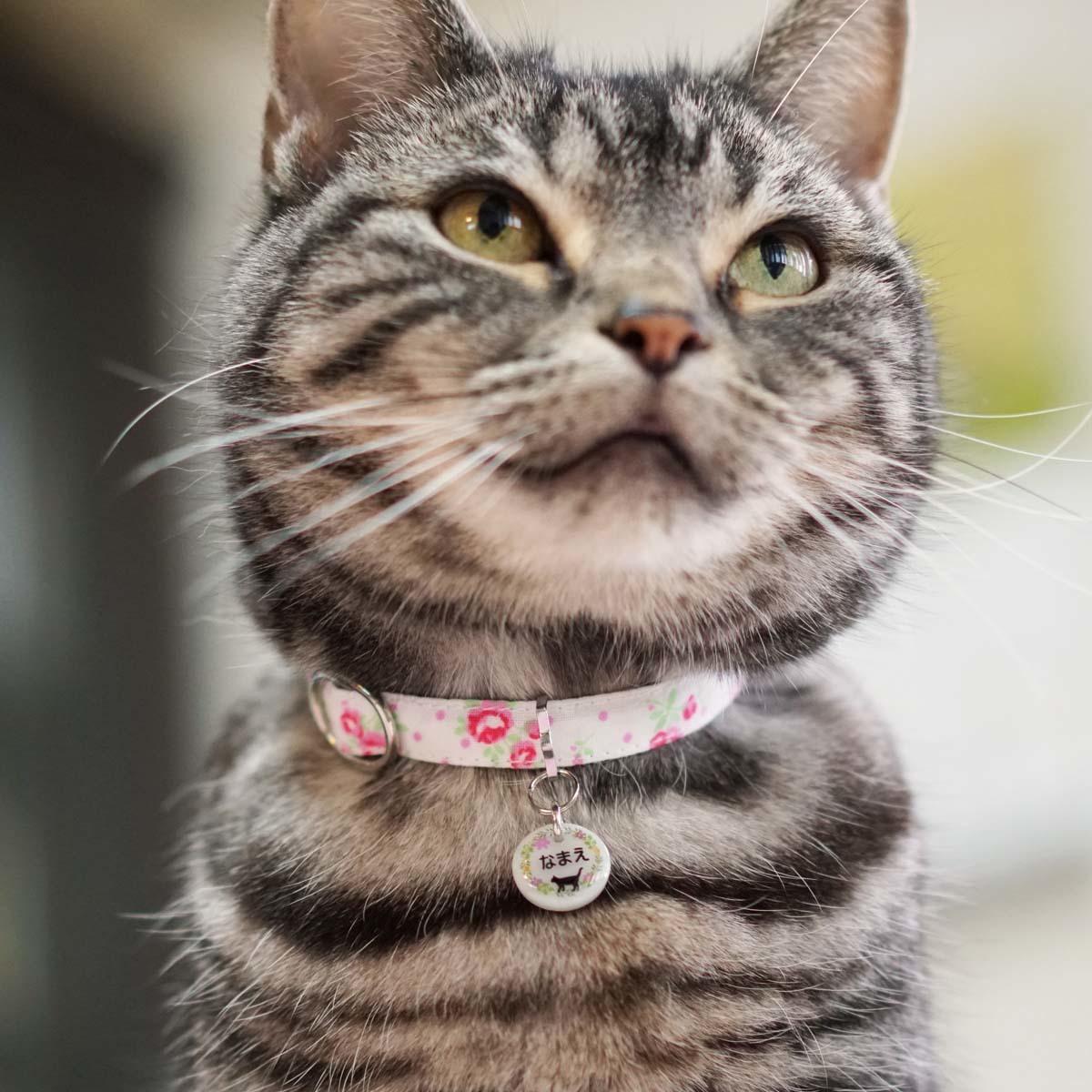 k*neko猫ちゃん用迷子札
